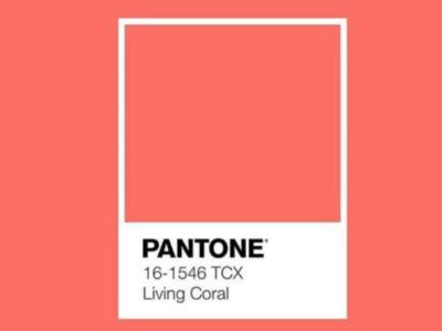 Żywy Koral (Living Coral) kolorem roku 2019 według Instytutu Pantone